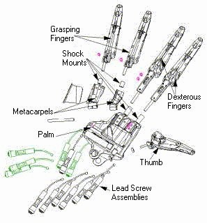 exploded hand diagram